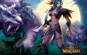454-292-World_of_Warcraft1